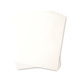 Catalogue Envelope - 24lb Recycled White 10